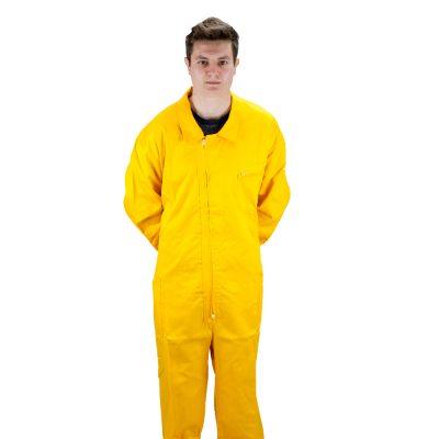 Buzo amarillo Mono groc Combinaison jaune Yellow suit beekeeper