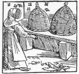 Apicultura en la Edad Media